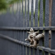 some-wood-in-fence